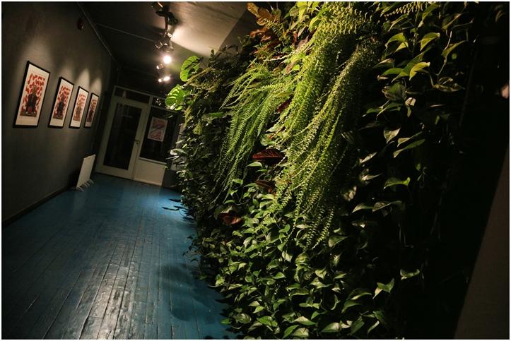 Erinevate Tubade Klubi botaanikasein